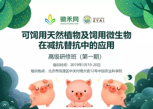 4 改善畜禽饲养环境      动物肠道的改善对粪便的气味,氨浓度等有